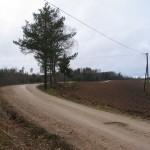 Tsiistre küla küntud põllud